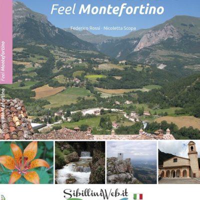 Guida Turistica Vivere Montefortino