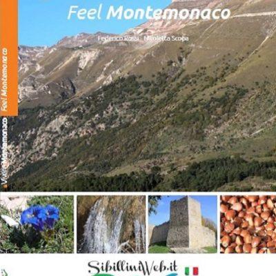 Guida Turistica Vivere Montemonaco